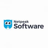 Netpeak software